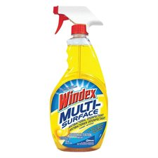 Windex® Multi-Surface Cleaner