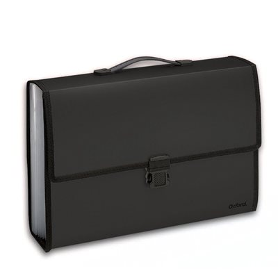 13-Pocket Expandable Carry Case