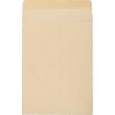 Kraft Expandable Envelope